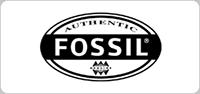 fossil-menu